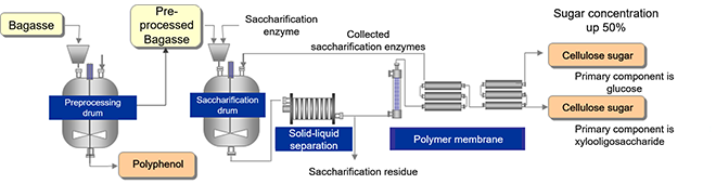 Production flow of cellulose sugar, oligosaccharides and polyphenols from bagasse